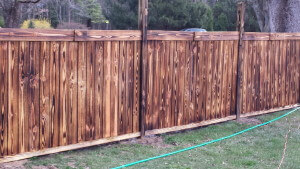 Shou Sugi Ban Fence Project Homeowner Gc