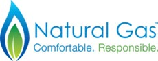 Natural Gas Incentives Rebates